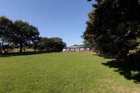 The Front Field